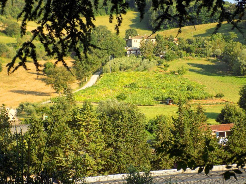 Tuscany - An Italian Affair
