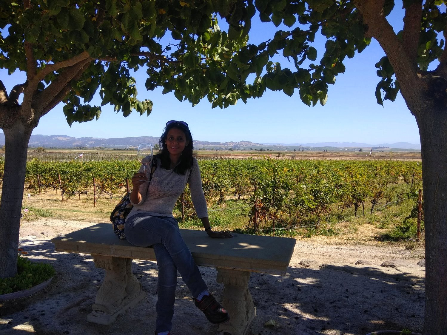 Vineyards and wine musings